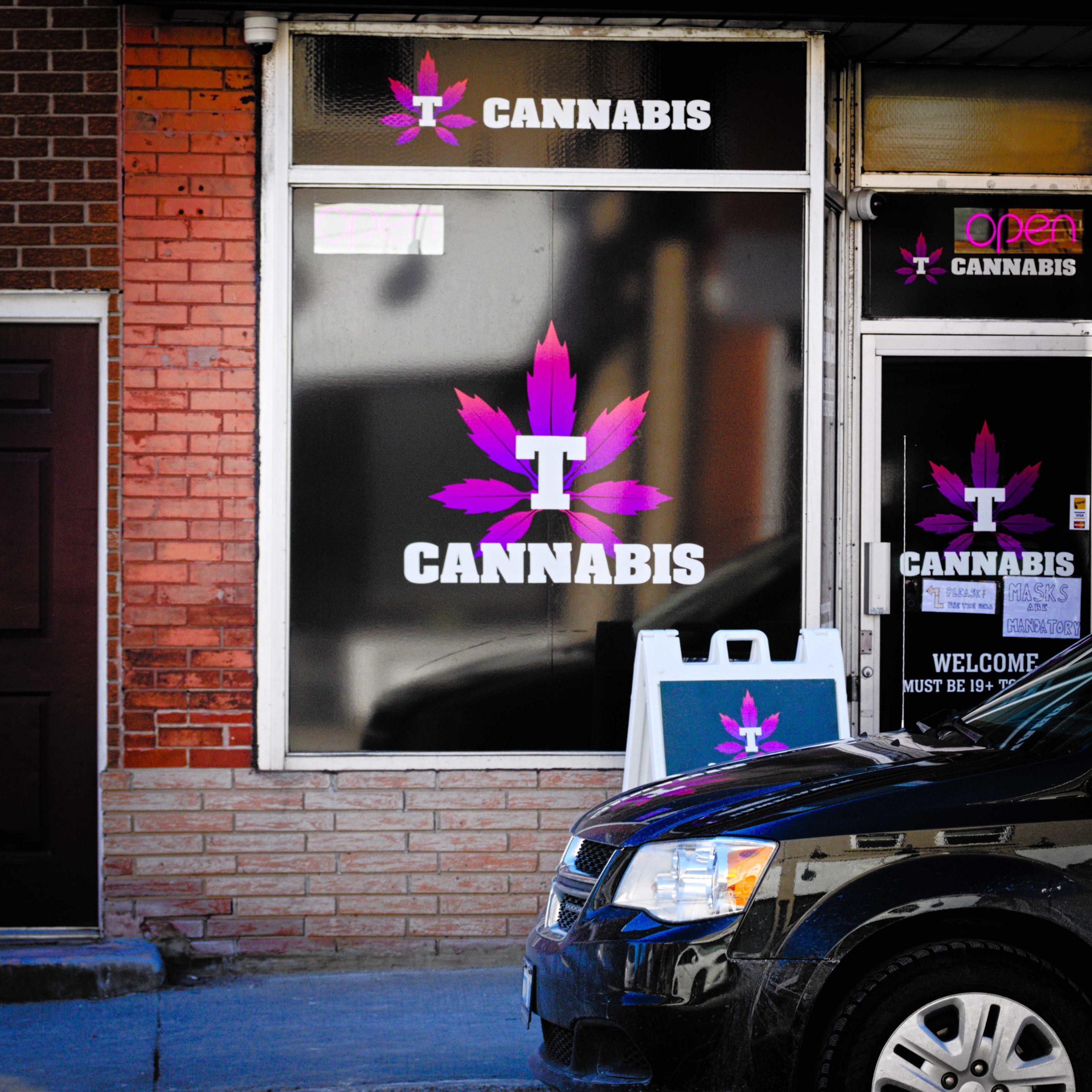 T Cannabis